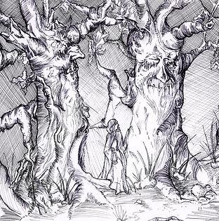 Forest of Grimm.illustration