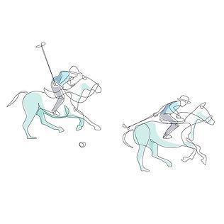 Polo.illustration