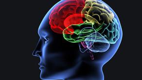 L'entrainement cognitif