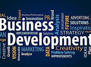 Business Developent.jpg