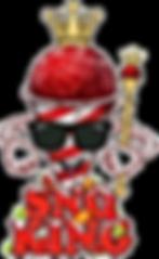 snoKing-2_edited.png