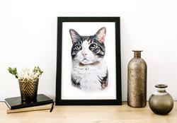 hand drawn pet portrait of brown tabby cat. Custom Pet portrait by Taylor Walker of TayloredIllustra