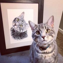 How accurate are your portraits, how accurate are TayloredIllustration pet portraits?