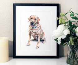 Paper anniversary gift, first anniversary wedding gift for spouse, custom pet portrait of our dog