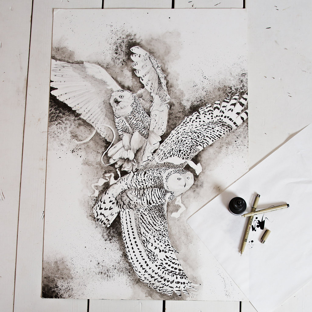 Black & White ink drawing of Great Snowy Owls