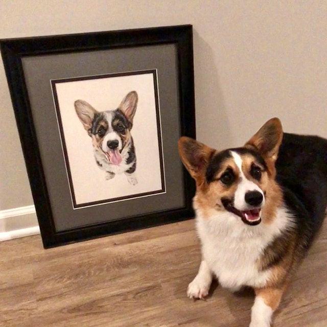 Pet Portrait - Winston
