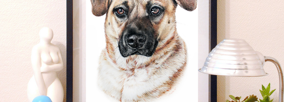 Pet Portrait - Thurman