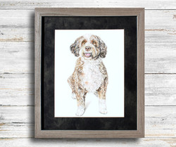 Hand Drawn pet portrait in a light gray frame with dark gray mat. Custom pet portrait by TayloredIll