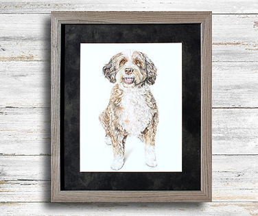 Labradoodle Pet Portrait in a light, warm gray frame and velvet gray mat