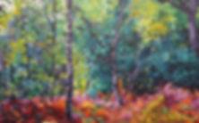 Autumn trees colourful