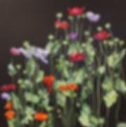PoppyDrama I.jpg
