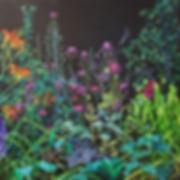 Summer Flowers I.jpg