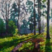 trees woodland