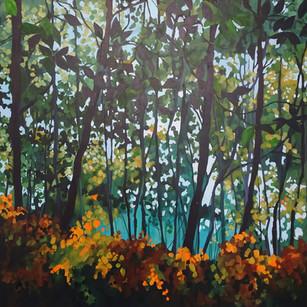 Trees in Mapledurham