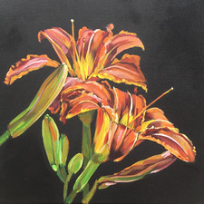 Spring Lilies