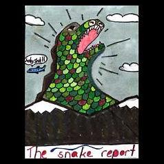snake report.jpeg