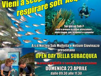 Open Day - Prove di immersione gratuite