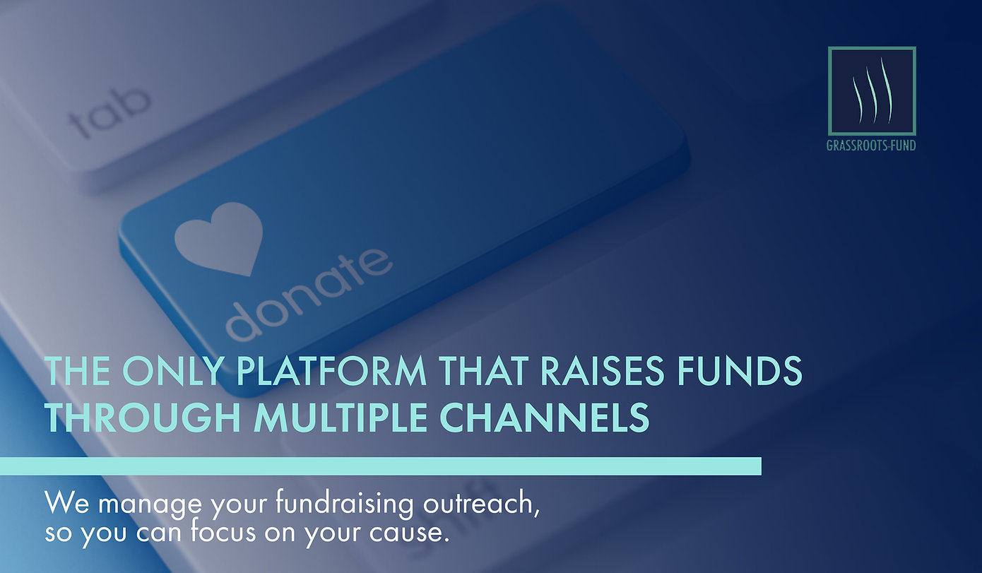 749136_Only Platform that raises funds2_