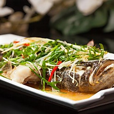 Steamed Bluecod with Ginger and Spring Onions in Sweet Soya Sauce (whole)