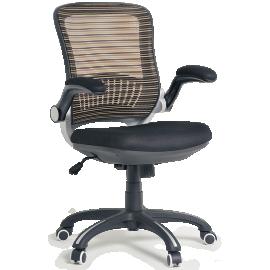 Cadeira Diretor 6
