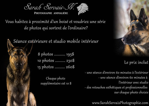 Séance_extérieure_et_studio_mobile.jpg