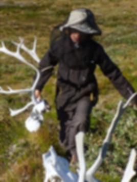 Knochen Sammeln in Grönland - Tulukkap Anersaava
