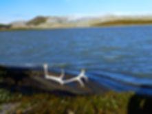 Grönland - Tulukkap Anersaava
