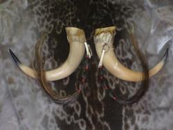 Rasseln / www.tulukkap-anersaava.de / PeterStrauss / bonecarving / Natur /Schamanismus / Amulett / S