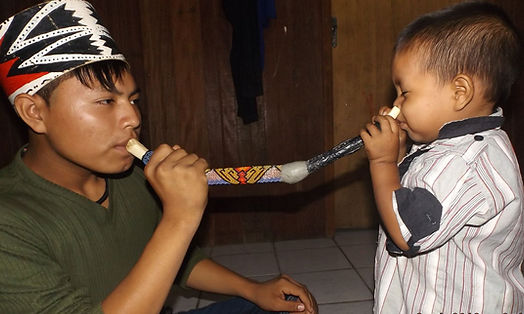 Rapé, Rapé ist eine heilige Medizin, die seit tausenden von Jahren von Heilern und Schamanen am Amazonas verwendet wird. Sie ist ein wichtiger Teil ihrer Stammeskulturen. Rapé ist eine komplexe Mischung aus pulverisierten Amazonaspflanzen, Aschen und wildem Tabak, zwanzig mal stärker als der uns bekannte Tabak. Rapé kann Bewustseins erweiternd wirken.  Der Gebrauch von Rapé zu Heilung und Zeremonien durch die indigenen Kulturen reicht mindestens bis in die Zeit der Maya zurück. Einige Bestandteile der Mischungen werden für immer Geheimnis der Schamanen bleiben, die es herstellen.  An einer Rapézeremonie sind normaler Weise mindestens zwei Personen beteiligt, der Bläser und der, der Rapé durch das Tepi in die Nase gepustet bekommt. Die Wirkung fokussiert schlagartig Bewustsein und Intention. Darüber hinaus hilft Rapé bei physischen, emotionalen und spirituellen Störungen und beseitigt negative Energien, von den Heilern `Panema`genannt. Die Schamanen nutzen Rapé um sich mit ihren Energie