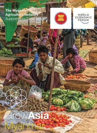 Myanmar Agriculture Network Brochure 2016