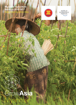 Myanmar Agriculture Network Brochure 2017