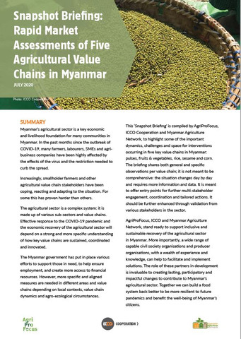 COVID-19 Snapshot Briefing (English): Rapid Market Assessment of Five Agricultural Value Chains in Myanmar