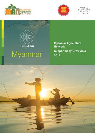 Myanmar Agriculture Network Brochure 2018