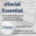 eSocial Online 2.png