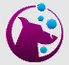 rgc logo_edited.png