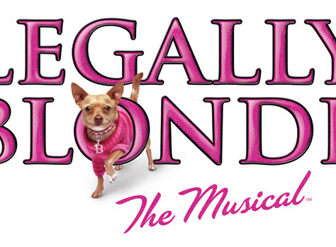Legally Blonde Summer Camp