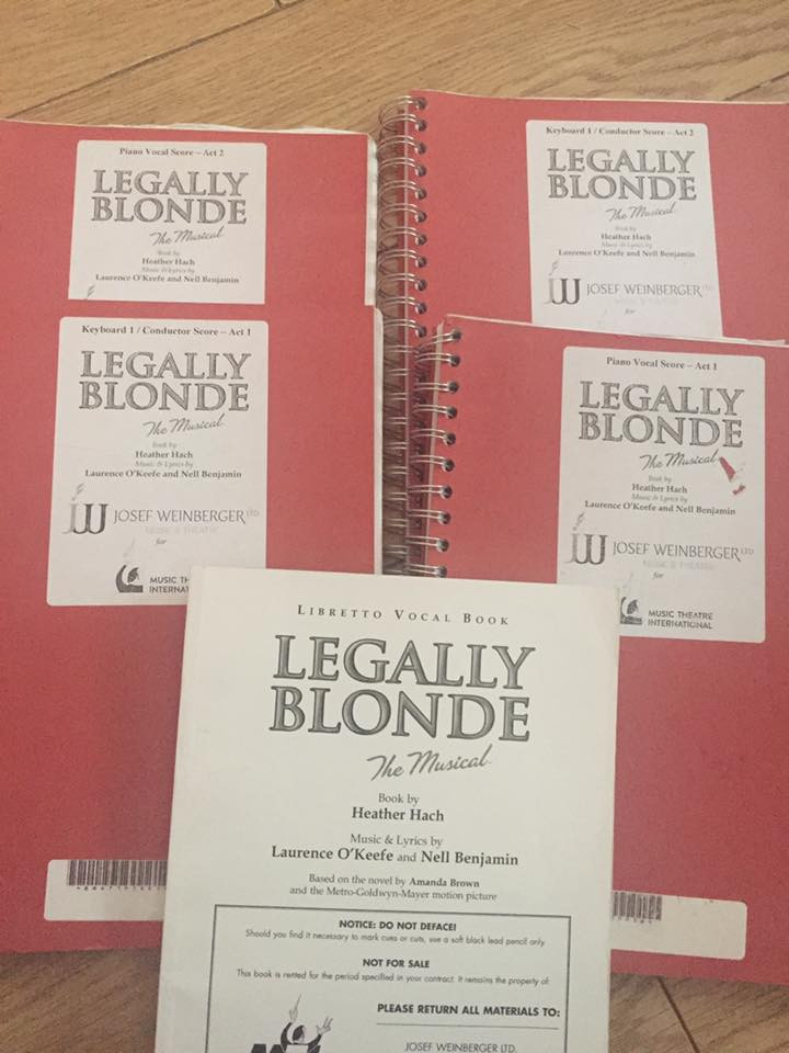 DSS Summer Camp Legally Blonde
