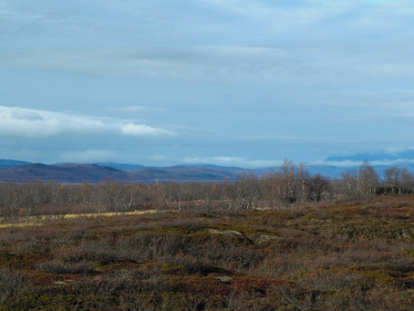 New research from the Arctic: thawing permafrost peatlands may add to atmospheric CO2 burden