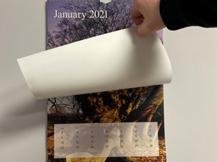 'Treemendous' new calendar that supports the Woodland Trust