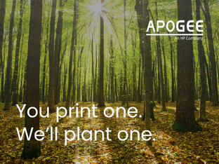 Apogee expands its sustainability programme with PrintReleaf