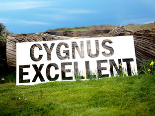 Swanline Paper & Board excels with Cygnus Excellent display board