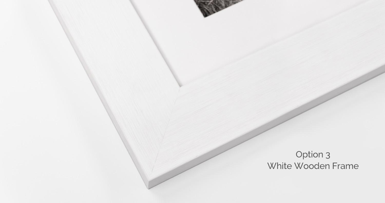 Story-board-frame-white.jpg