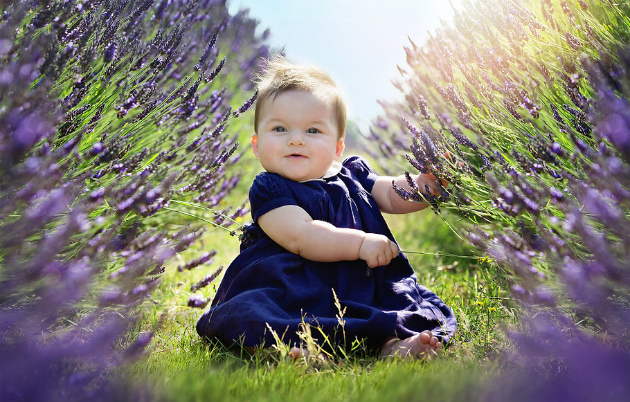 baby-lavender-photography-mayfield.jpg