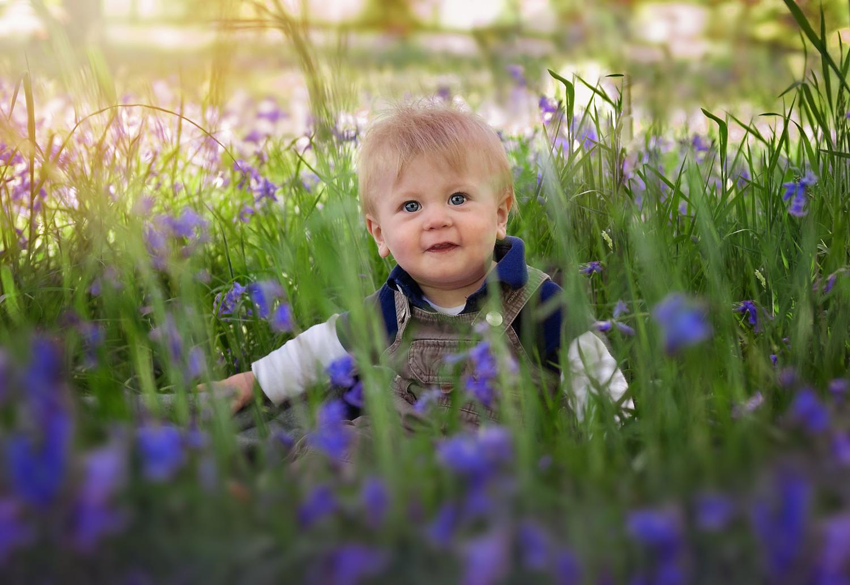 baby-bluebells.jpg