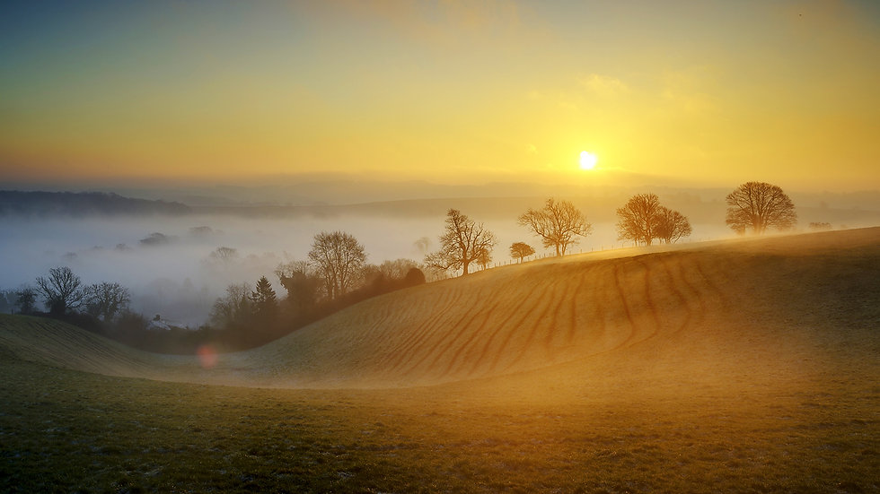 surrey-countryside-winter.jpg