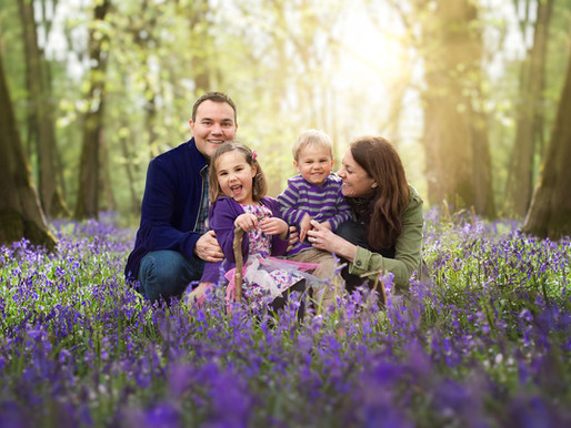 Bluebell Family photography Surrey
