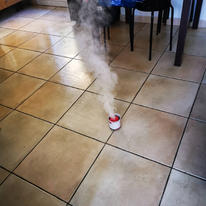 Fumigation cafards