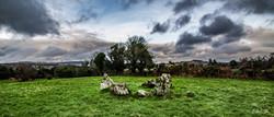 Inchireagh Stone Circle