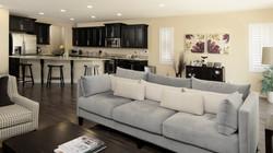 Living Room Flow