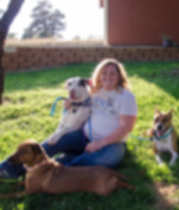 dog trainer denver parker aurora lone tree castle rock castle pines aggression holistic anxiety puppy